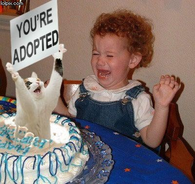 You're Adopted Cake